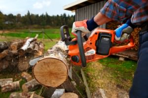 Пилим дрова электропилой