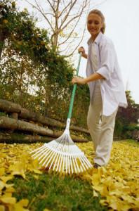 Убираем пожухшие листья