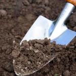 Как подготовить почву для посадки газона