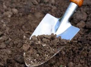 Перекапываем почву