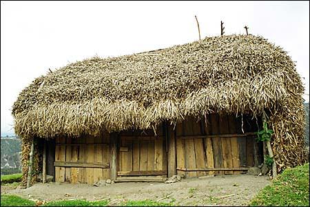 Крыша из сена
