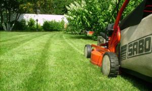 Стрижка газонокосилкой