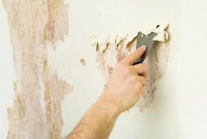 Зачистка пораженных частей стены шпателем