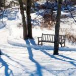 С появлением снега, как оказалось, дачный сезон заканчивается не для всех