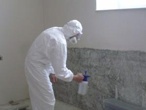Средства от плесени и грибка на стенах — основные советы